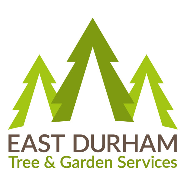 East durham tree garden services in wingate county durham for Tree and garden services